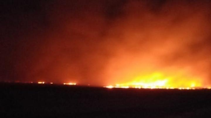 В Курганской области горели поля и лес возле деревни