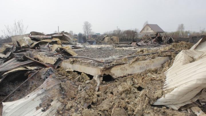 До суда дошло дело новосибирца, который поджег траву на своем участке, а в итоге спалил более 60 дач