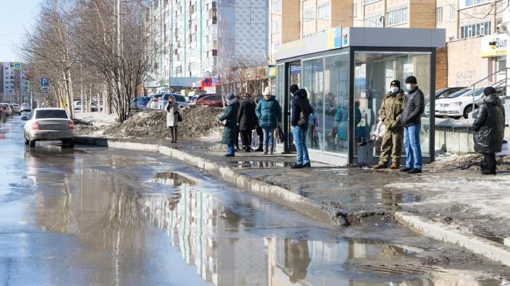 Публикуем список дорог Сургута, которые потребовала починить прокуратура. Добавь свою