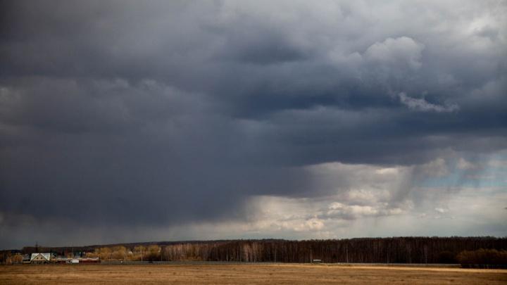 В Тюменской области пройдут дожди с грозой. А затем опять станет очень жарко