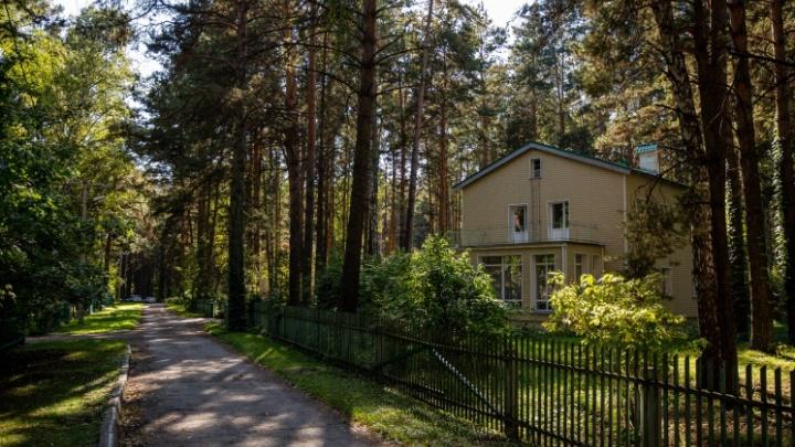«Кусочек бабьего лета»: в Новосибирске воздух прогреется до +22 градусов