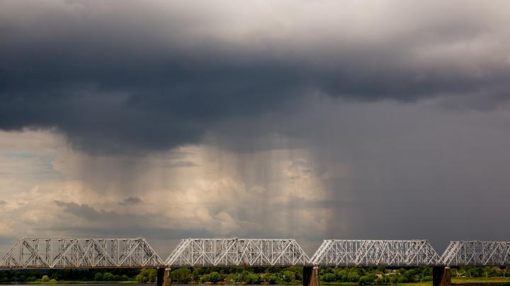 Мокрый снег, ветер и скачок давления: синоптики рассказали, как будет меняться погода в Ярославле