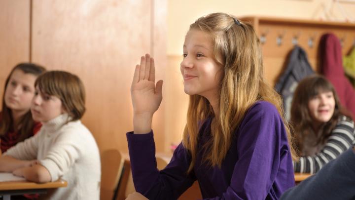 «В нашей школе уже десятки учеников, кому это выгодно?»: родители 84% школ города сделали свой выбор