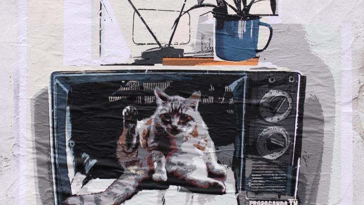 В центре Перми появился новый стрит-арт. На нем изображен кот в телевизоре