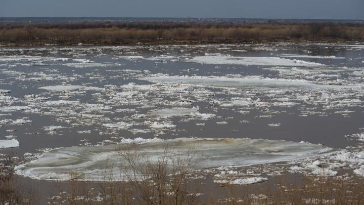 Ледоход достигнет Архангельска 20–21 апреля