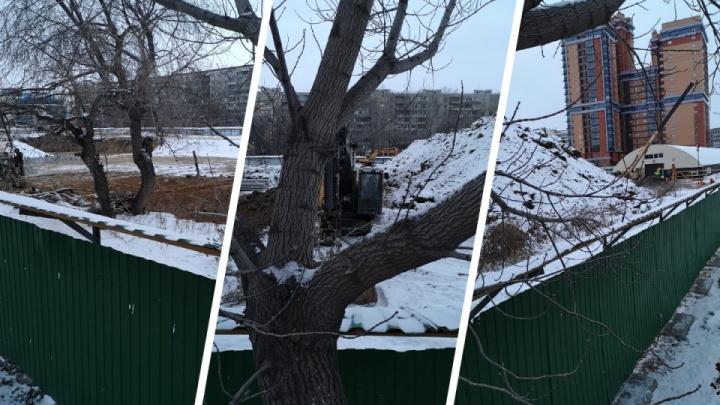 Следователи не смогли выяснить, кому принадлежат найденные в центре города останки