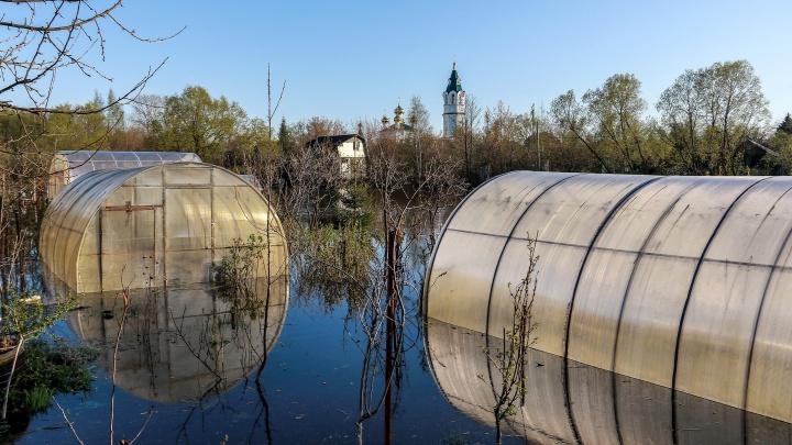 Паводок в Нижегородской области: уровень Волги в Сормове превысил опасную отметку