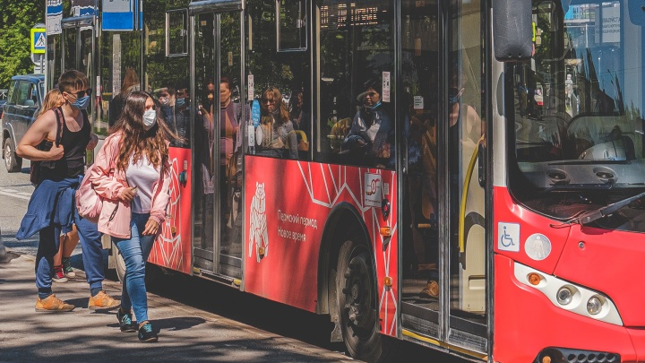 В Перми появятся два новых автобусных маршрута