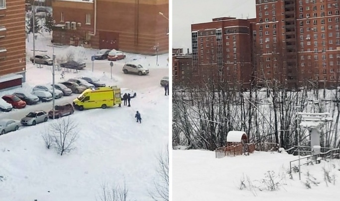 На тетю 9-летней девочки, которая погибла на горке в Новосибирске, завели уголовное дело