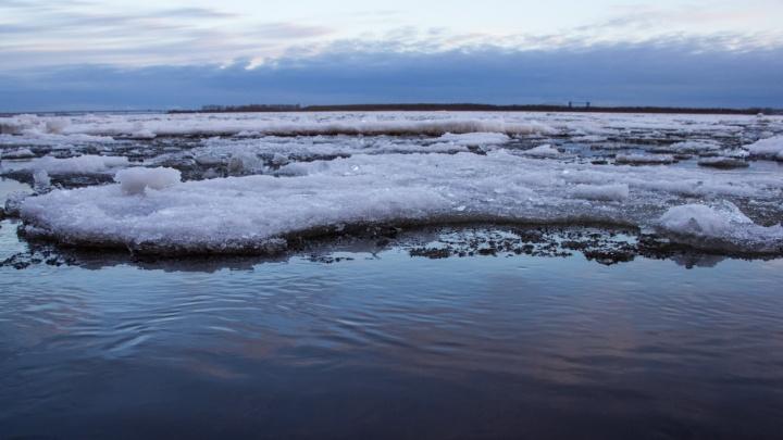 Вечером в Архангельске прогнозируют ледоход
