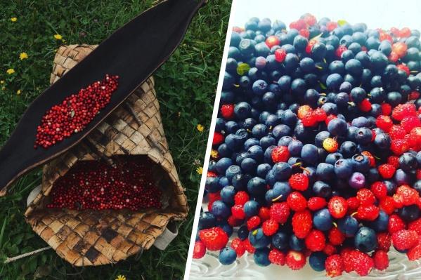 А вы уже ходили в лес за ягодами? Покажите свой «улов»
