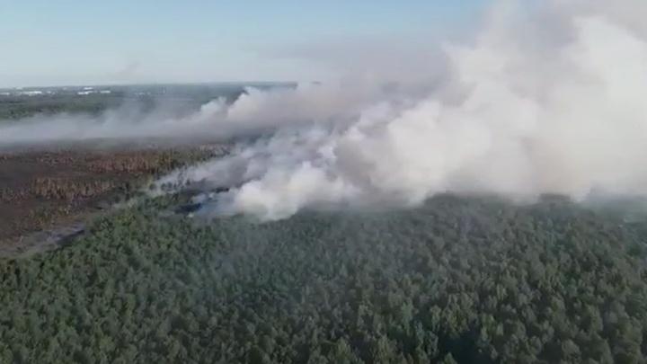 Приходится тушить вручную. Лесной пожар под Краснокамском сняли на видео с высоты