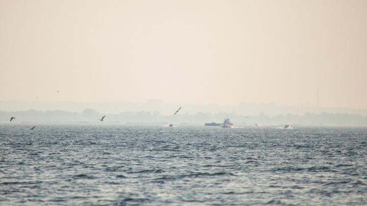 В Самарской области ищут свидетелей столкновения катера Жигулевского заповедника и лодки на Волге