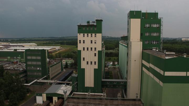 Экологическая ответственность — не просто «зеленая» мода: что бизнес и власти делают для экологии в Ярославле