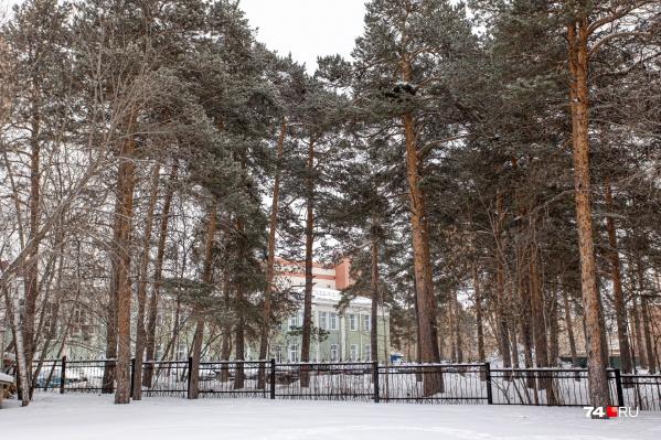 Стройку хирургического корпуса областной детской больницы хотят начать на участке в челябинском городском бору