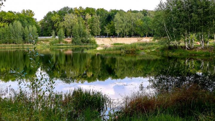 Природа и полный дзен. Загородные базы отдыха в Нижегородской области