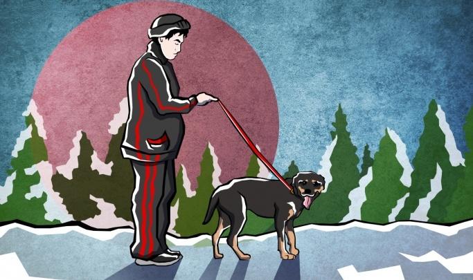 В Красноярске нашли хозяина ротвейлера, который держит в страхе «Белые Росы»