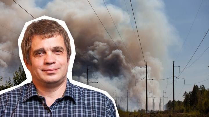 «Власти отделались легким испугом»: эксперт Гринписа — о тюменских пожарах и последствиях для природы