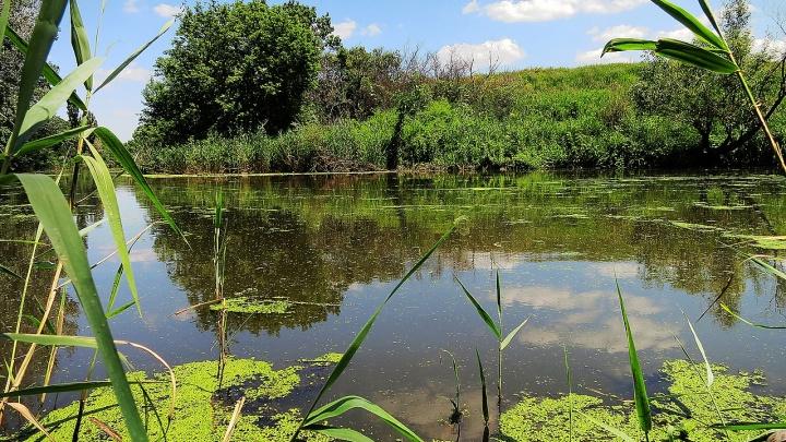 Подросток утонул на рыбалке в Ростовской области