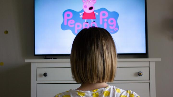 В самарских магазинах незаконно продавали «серые» фигурки героев мультика «Свинка Пеппа»