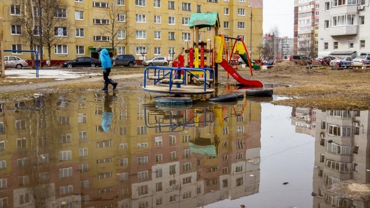 #Такой_Ярославль: противоречивые фотографии весны, показывающие разруху в городе и красоту природы