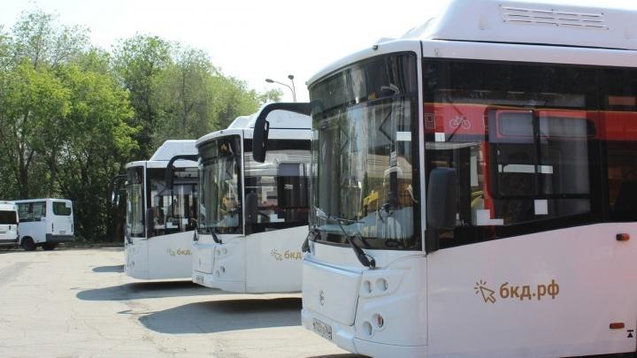 Автобусы до «Ласточки» из Нового города в ближайшее время не пустят