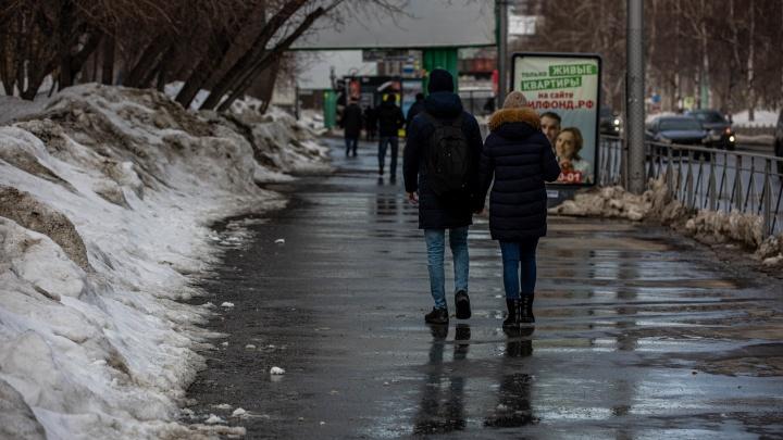 Оттепель или снова морозы? Какая погода ждет новосибирцев нагрядущейнеделе