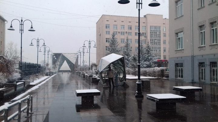Омские синоптики спрогнозировали снежные выходные