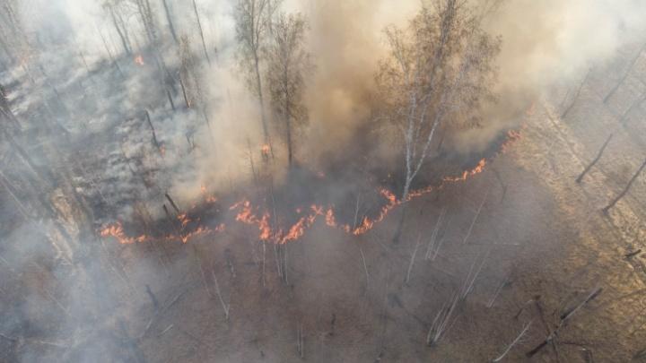 «Продолжаем гореть». Публикуем экстренное обращение губернатора к жителям Тюменской области