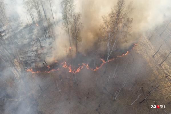 В последние недели горят не только леса на юге области, но и вокруг Тюмени
