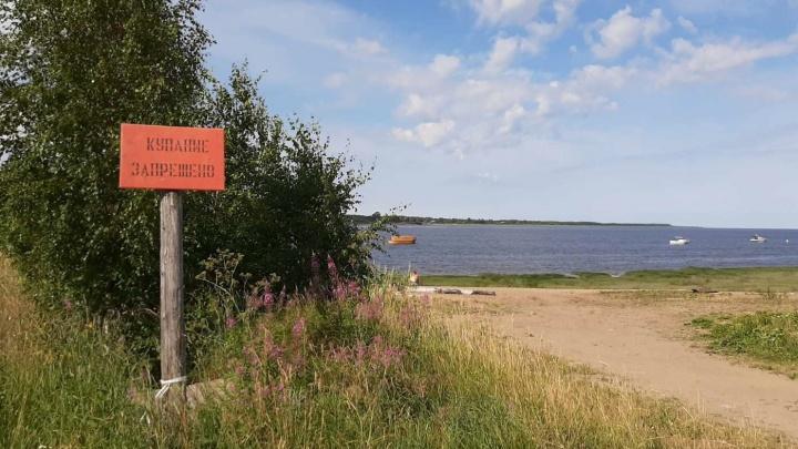 «Ныряли и искали руками»: в реке Онеге на глазах у родителей утонула десятилетняя девочка