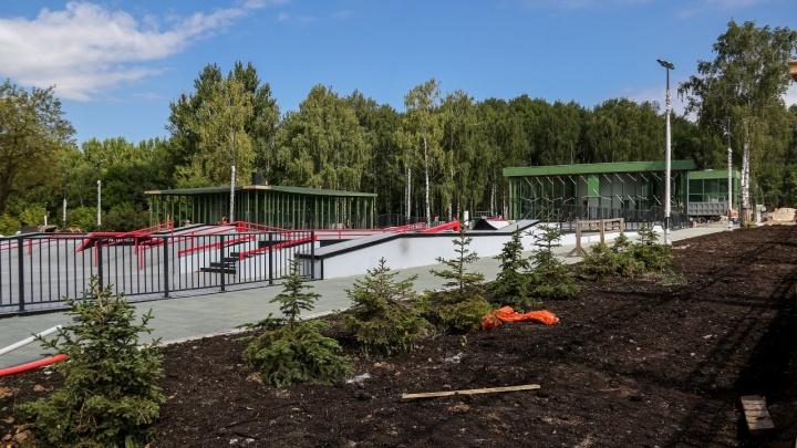 Лишь часть территории парка «Швейцария» откроют 22 августа