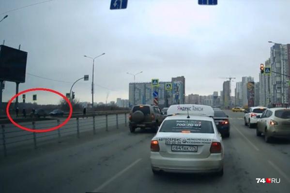Девушка бежала через дорогу с собакой на поводке. Автомобилист пропустил других пешеходов, а на ее появление не успел среагировать