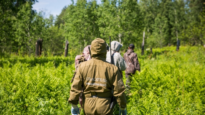 Волонтерам, занимающимся поиском пропавших в Киселёвске девочек, требуется помощь. Рассказываем какая
