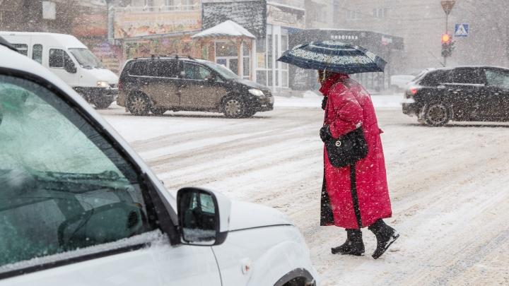 Весна, ты заблудилась: смотрим погоду в Волгограде на будущую неделю