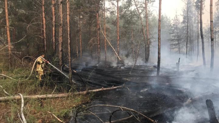 Более 80 человек и техника: что известно о крупном пожаре в Волгоградской области