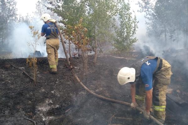 Пожарным хватает сил и средств для тушения огня