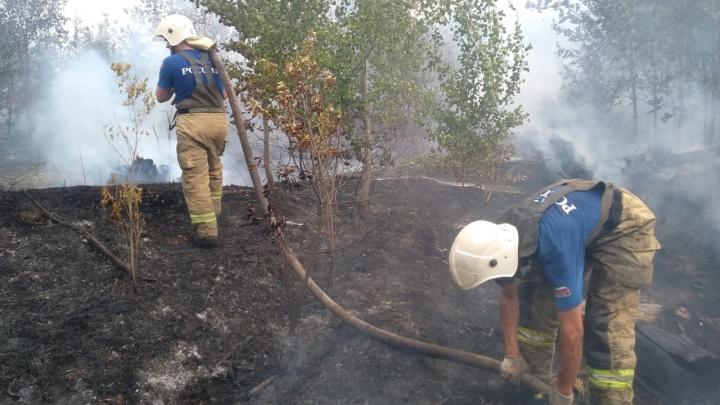 Добровольцы для тушения пожара не нужны: в мэрии Тольятти опровергли призывы о помощи в соцсетях