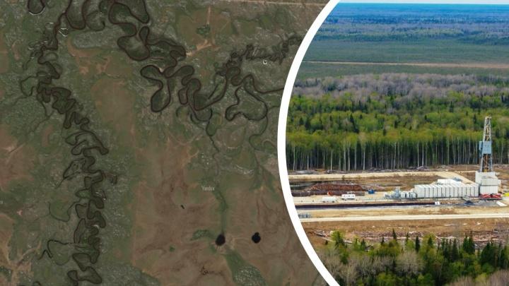 Семь полных ванн нефтепродуктов: какими будут последствия разлива на месторождении в Уватском районе