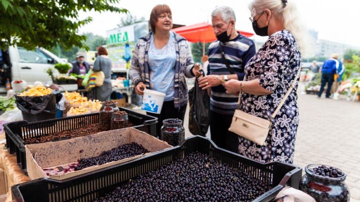 Почем дары садоводов и грибников в Красноярске: обзор городских рынков