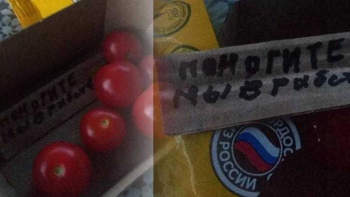 Производитель помидоров, в упаковке которых нашли тревожную записку, начал внутреннюю проверку