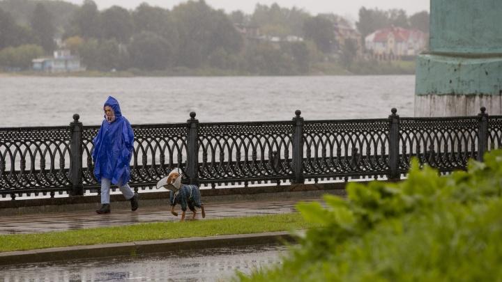 Хлябистый август: метеорологи дали прогноз на последний летний месяц