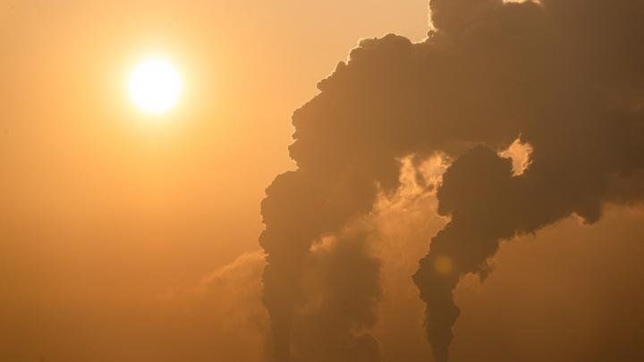 НСО оказалась первой в России по выбросам опасного канцерогена — откуда он взялся и какие болезни провоцирует