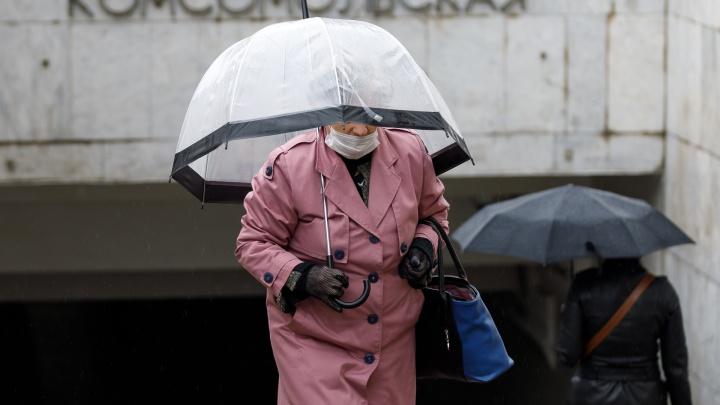 Зима ушла в тень: в выходные посеревший Волгоград зальет дождем