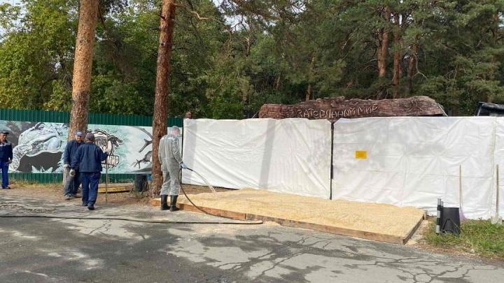 В челябинском зоопарке из-за вспышки птичьего гриппа начали гибнуть гуси и лебеди