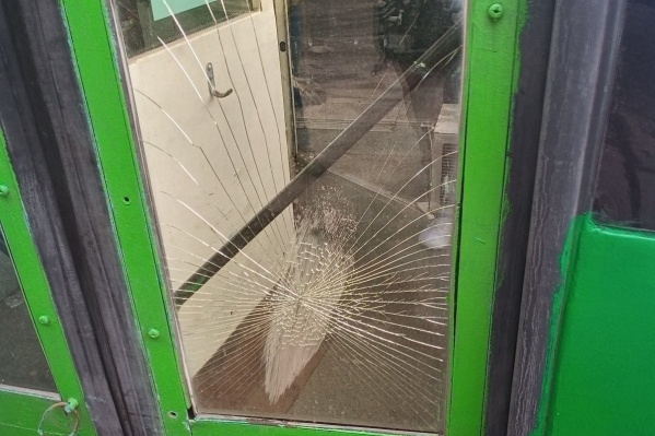 Мужчина разбил стекло троллейбуса в парке