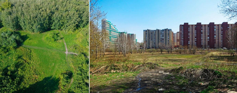 Ровная, ежегодно затапливаемая площадка станет зеленым лугом — здесь можно будет проводить какие-то события