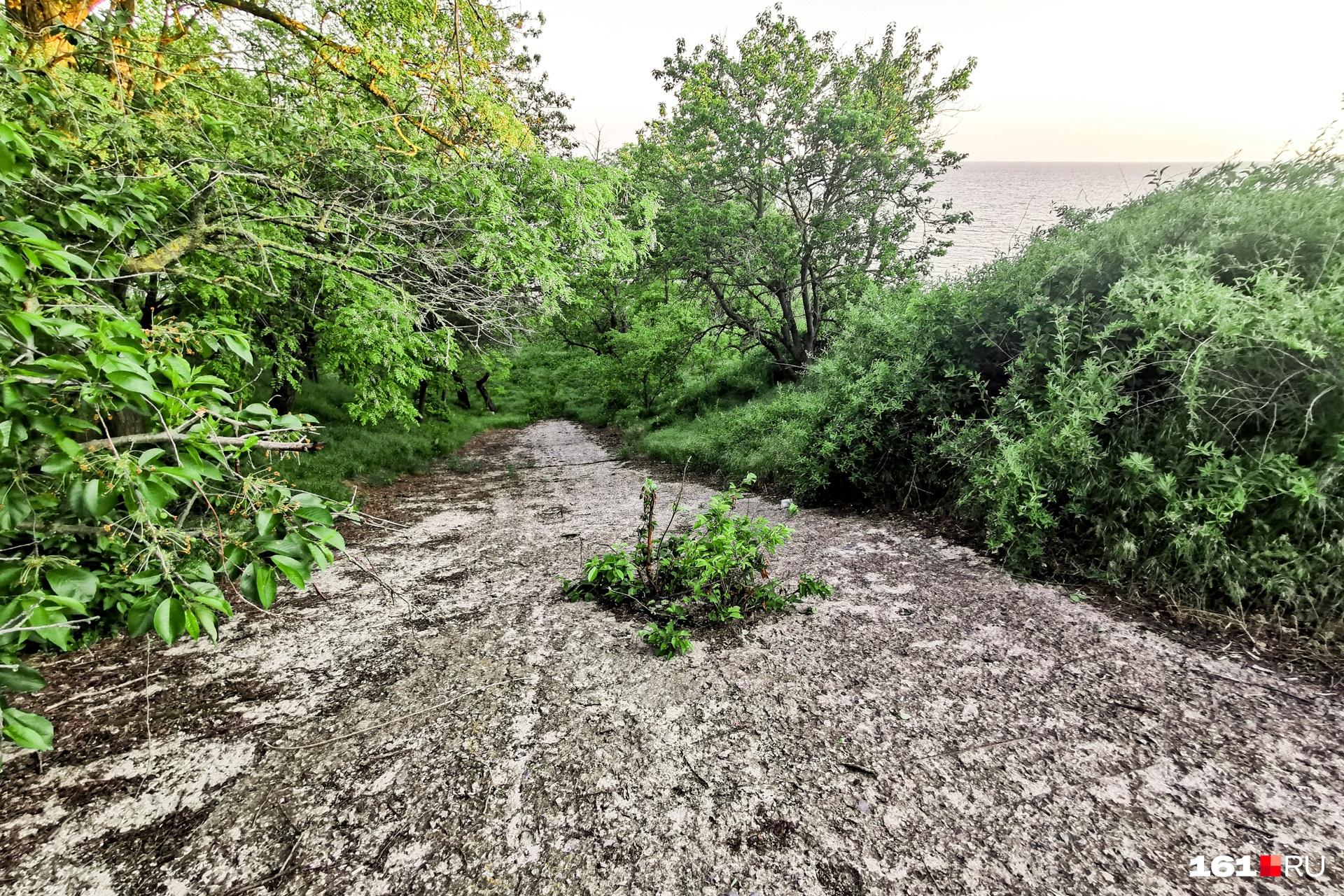 Забетонированный склон, по которому вода с очистных уходит в Азовское море