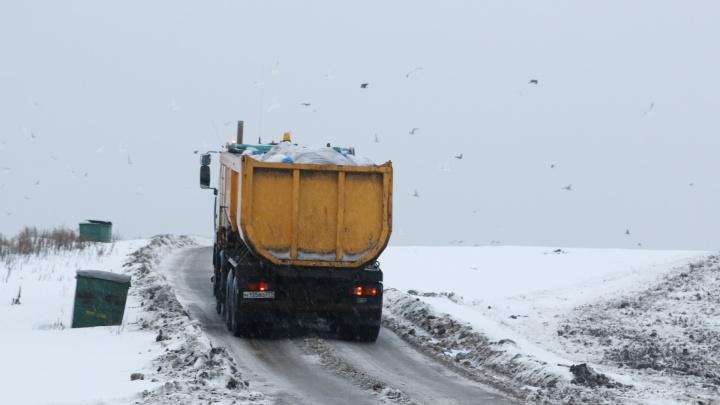 Юрист из Архангельска объяснил, почему плата за вывоз мусора может измениться