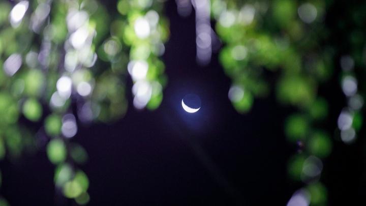 Новолуние и падающие звезды: волгоградцев зовут понаблюдать за «рождением» Луны